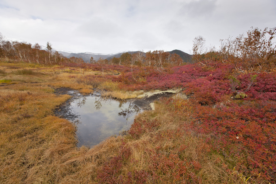 Осень на Камчатке, Autumn in Kamchatka